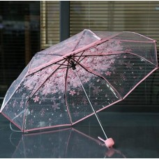"Ladie's Transparent Umbrella ""Orchid"""